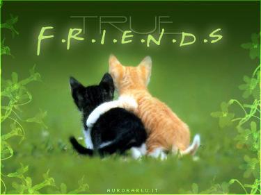 VENERDI' 6 AGOSTO True_friends